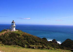 Quelques sites culturels et historiques à privilégier en Nouvelle-Zélande
